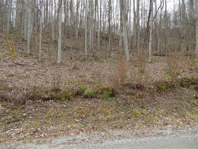 Lot 507 Kitty Lane, Waynesville, NC 28785 (#3264637) :: Puffer Properties