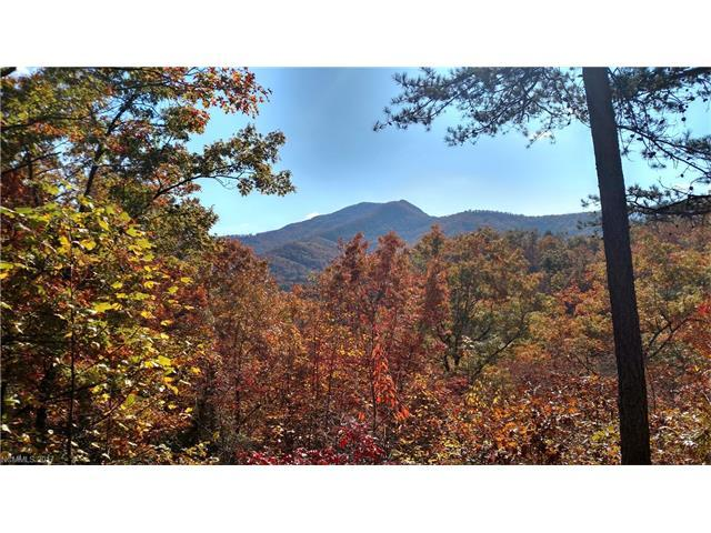 Lot #41 S Country Club Drive #41, Cullowhee, NC 28723 (#3264693) :: Washburn Real Estate