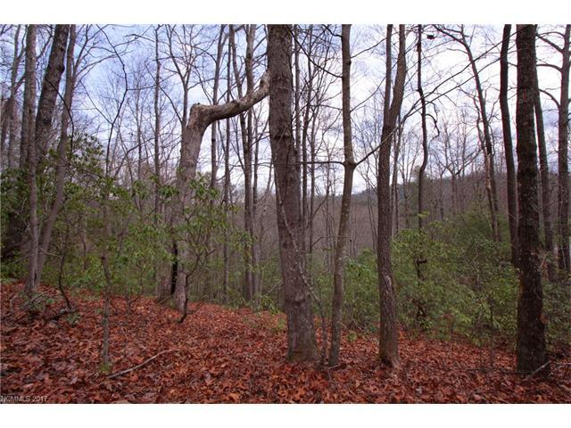 Lot 18 Crystal Creek Drive, Pisgah Forest, NC 28768 (#3264925) :: Homes Charlotte