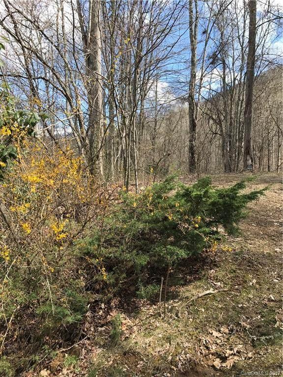 Lot K Section 6 Julalbo Road Lot K Sec 6, Whittier, NC 28789 (#3264987) :: Modern Mountain Real Estate