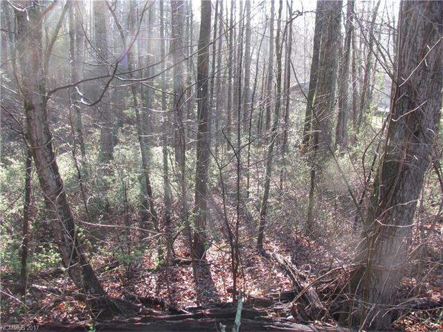 0 Burge Mountain Road #74, Hendersonville, NC 28791 (#3265148) :: Caulder Realty and Land Co.