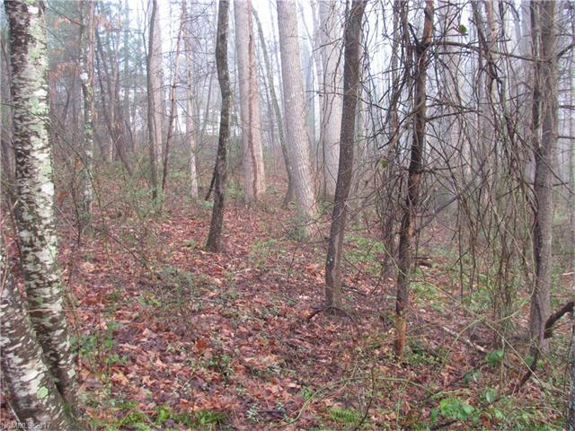 0 Amberjack Drive 13,12,11, Hendersonville, NC 28791 (#3265259) :: Caulder Realty and Land Co.