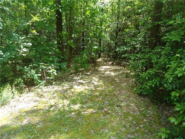 306 Old Spring Drive, Brevard, NC 28712 (#3266327) :: Stephen Cooley Real Estate Group
