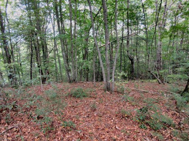 lot 4 Oxford Court #4, Brevard, NC 28712 (#3266416) :: Rinehart Realty