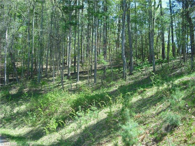 89 Timber Ridge Circle Lot 16, Leicester, NC 28748 (#3268565) :: Exit Realty Vistas
