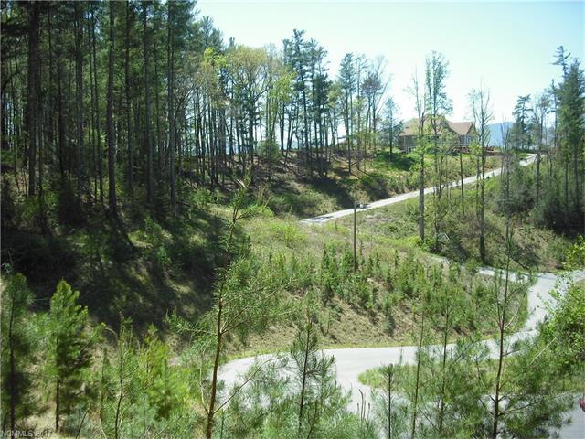 99 Timber Ridge Circle Lot 12, Leicester, NC 28748 (#3268567) :: Exit Realty Vistas