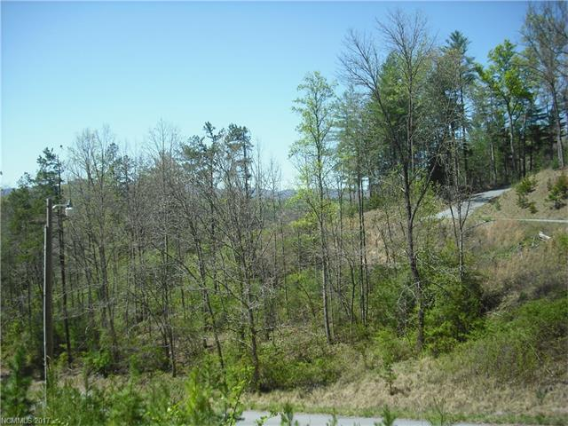 95 Timber Ridge Circle Lot 13, Leicester, NC 28748 (#3268568) :: Exit Realty Vistas