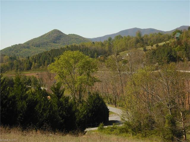 2 Timber Line Drive Lot 1, Leicester, NC 28748 (#3268581) :: Exit Realty Vistas