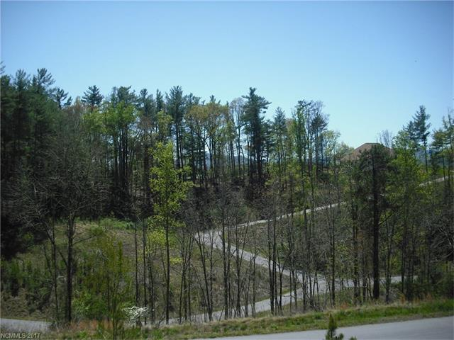 5 Hunting Ridge Lane Lot 11, Leicester, NC 28748 (#3268585) :: Team Southline