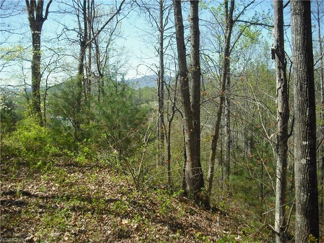 16 Cherry Top Trail Lot 6, Leicester, NC 28748 (#3268830) :: Puffer Properties