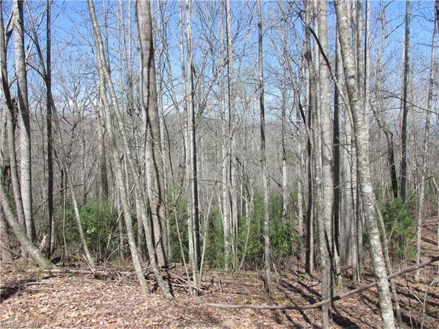Lot 13 Kanuga Ridge Road #13, Hendersonville, NC 28739 (#3269820) :: Rinehart Realty
