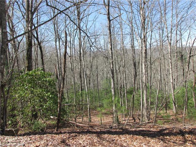 Lots 8,9,11 Kanuga Ridge Road 8, 9, 11, Hendersonville, NC 28739 (#3269838) :: Rinehart Realty