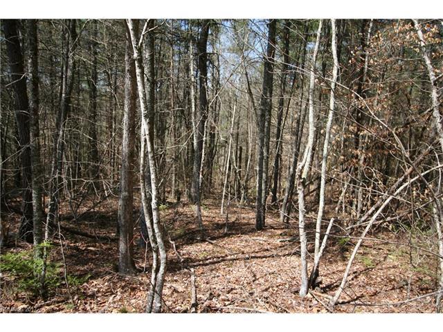 844 Settlers Trail 17 & PO28, Mars Hill, NC 28754 (#3270091) :: Rinehart Realty