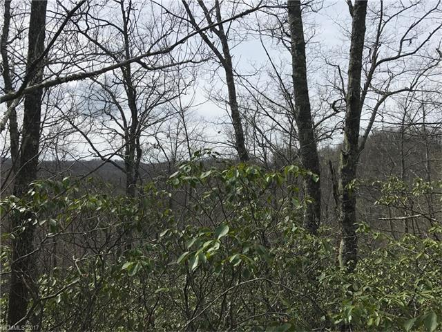 Lot 2 Mocassin Trail #2, Rosman, NC 28772 (#3271020) :: Puffer Properties