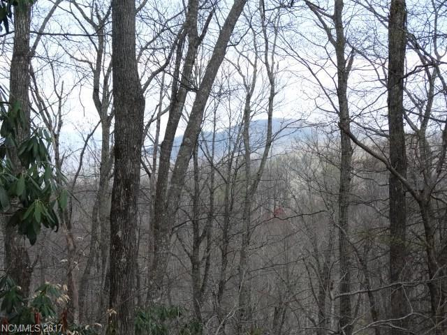 35 Damsefly Court E #35, Little Switzerland, NC 28752 (#3272339) :: Exit Mountain Realty