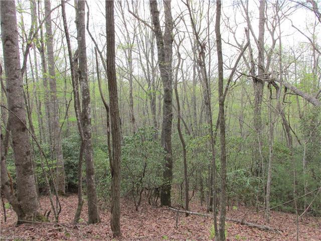 Lot 24 Kanuga Ridge #24, Hendersonville, NC 28739 (#3273004) :: Rinehart Realty