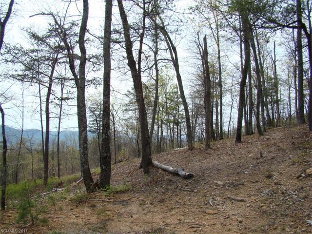35 Inspiration Ridge Drive, Bostic, NC 28018 (#3273065) :: Puffer Properties
