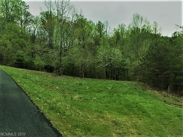 Lot 67 Spring Hollow Drive, Mars Hill, NC 28754 (#3273786) :: Exit Mountain Realty
