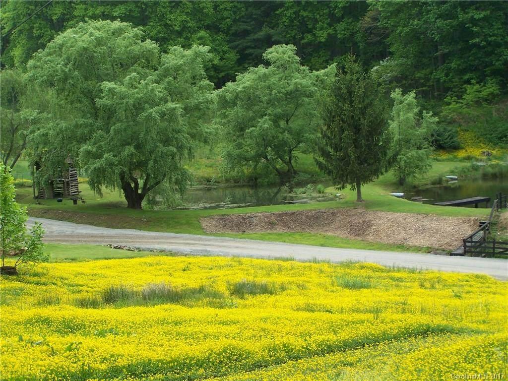 00 Appaloosa Trail - Photo 1
