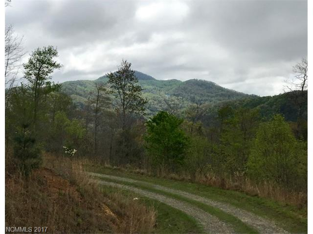 00 Firefly Trail #73, Marshall, NC 28753 (#3274383) :: Exit Mountain Realty