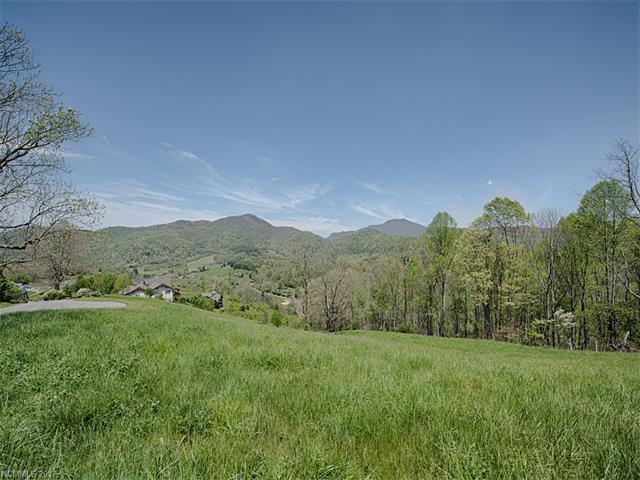 Lot 9 Everview Lane, Waynesville, NC 28785 (#3277442) :: Puffer Properties