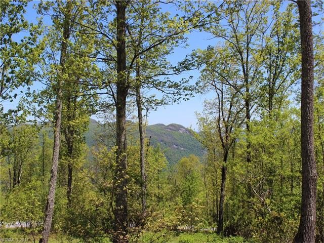 LOT 37 Grand Oaks Drive, Hendersonville, NC 28792 (#3277882) :: Exit Realty Vistas
