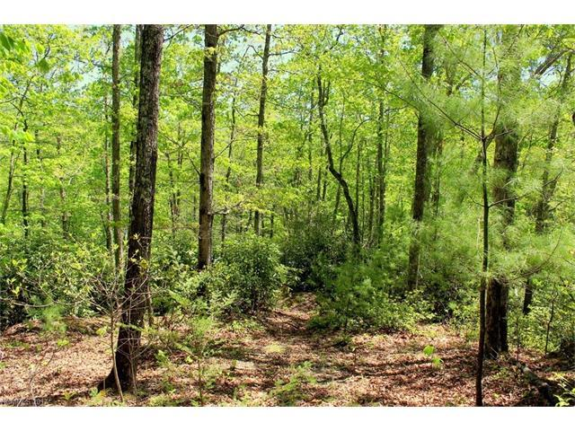 000 Firefly Trail Lot 78, Marshall, NC 28753 (#3278892) :: Rinehart Realty