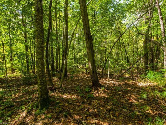 Lot #1 Drake Mountain Lane #1, Hendersonville, NC 28739 (#3279403) :: Rinehart Realty