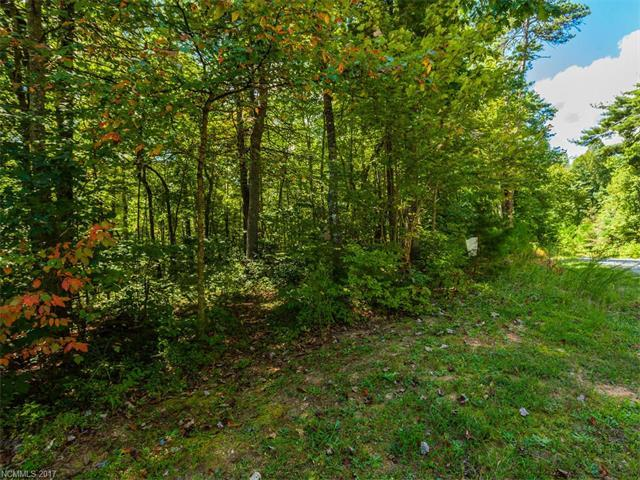 Lot #4 Drake Mountain Lane #4, Hendersonville, NC 28739 (#3279405) :: Rinehart Realty