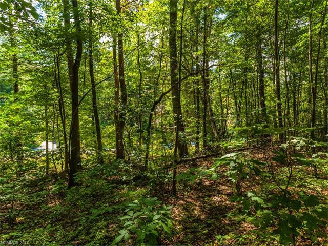 Lot #5 Drake Mountain Lane #5, Hendersonville, NC 28739 (#3279407) :: Rinehart Realty