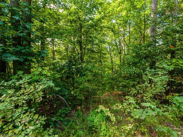 Lot #6 Drake Mountain Lane #6, Hendersonville, NC 28739 (#3279408) :: Rinehart Realty
