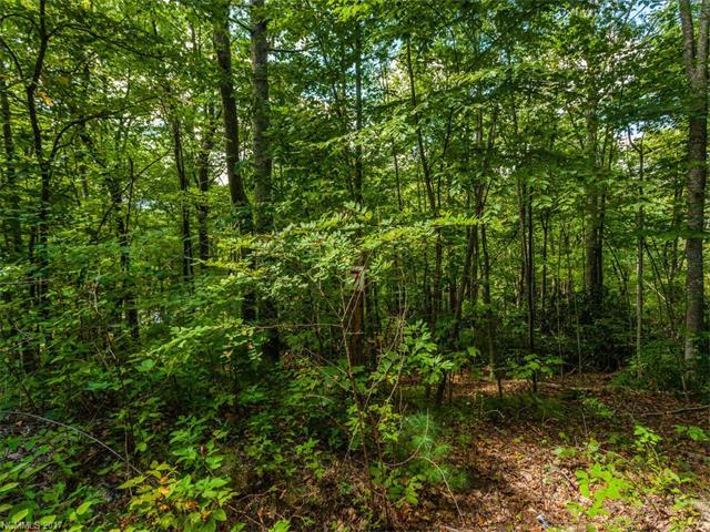 Lot #7 Drake Mountain Lane, Hendersonville, NC 28739 (#3279409) :: Rinehart Realty