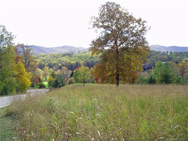 4 Rain Lily Trail #1, Arden, NC 28704 (#3281312) :: Miller Realty Group