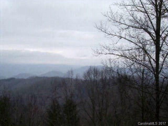 VL63 Mountain Forest Estates - Photo 1