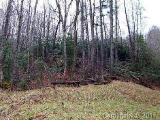 VL40 Mountain Forest Estates - Photo 1