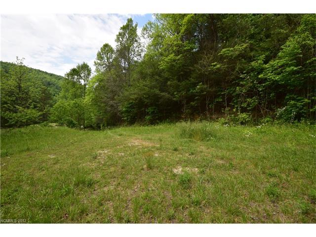 TBD Green River Road, Zirconia, NC 28790 (#3283997) :: Exit Mountain Realty