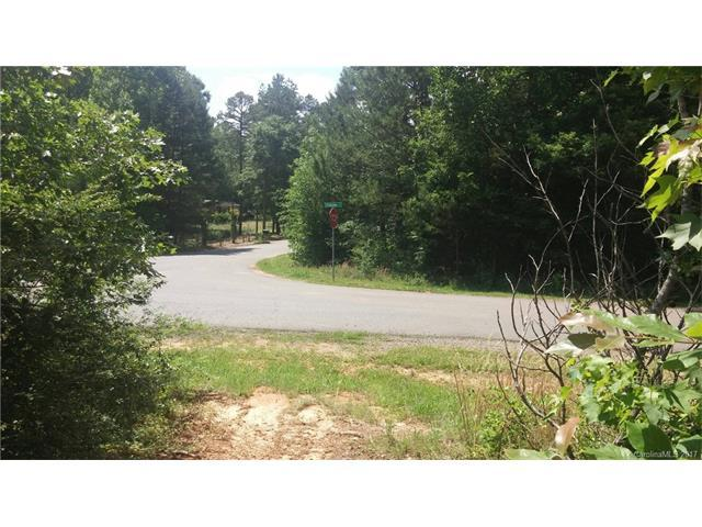 506 Patagonia Court #25, Rock Hill, SC 29730 (#3286050) :: Exit Mountain Realty