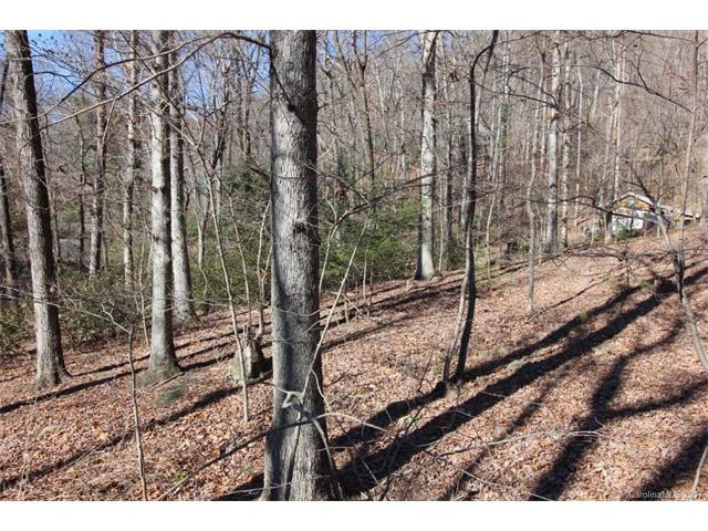 23-27 Terrace Avenue 23,24,25,26,27, Chimney Rock, NC 28720 (#3287230) :: Washburn Real Estate