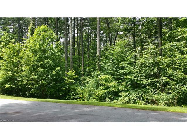 TBD Mountain Brook Trail L-49, Brevard, NC 28712 (#3287579) :: Robert Greene Real Estate, Inc.
