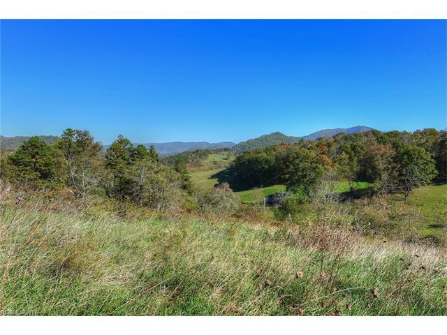 2 Tumbleweed Trail #2, Waynesville, NC 28785 (#3288076) :: Mossy Oak Properties Land and Luxury