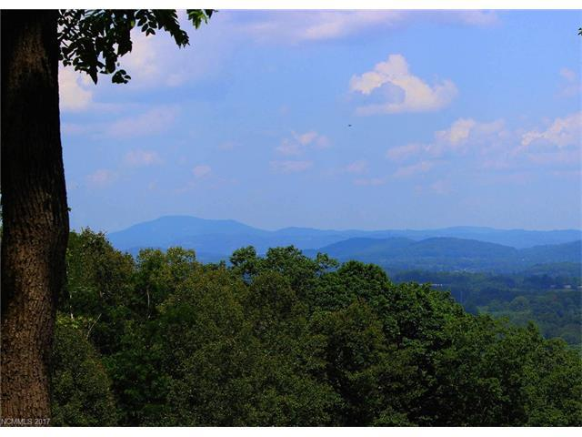 Lot c1 Longleaf Trail, Hendersonville, NC 28791 (#3288441) :: Charlotte Home Experts