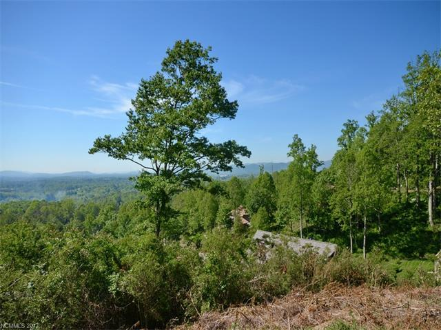 97 Destination Drive, Asheville, NC 28806 (#3289380) :: Miller Realty Group