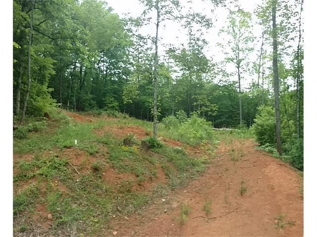 000 Falls Drive, Mill Spring, NC 28756 (#3289496) :: Rinehart Realty
