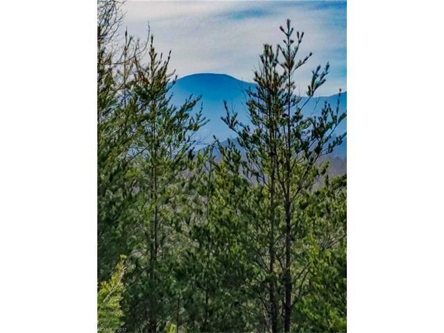 0 Freemans Ridge Lot 35, Lake Lure, NC 28746 (#3289582) :: Puffer Properties