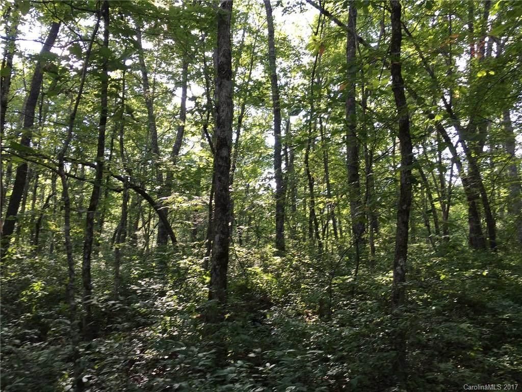 lot 16 Robin Hood Road - Photo 1