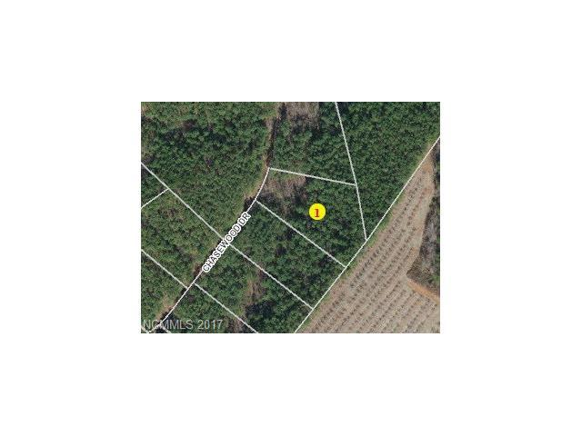 Lot 17 Chasewood Circle #17, Lake Lure, NC 28746 (#3290451) :: High Performance Real Estate Advisors