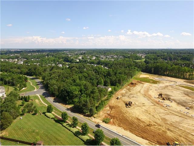 10621 Ellenwood Road, Huntersville, NC 28078 (#3291258) :: Premier Sotheby's International Realty
