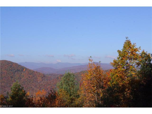 1819 Top Of The Mountain Road Lot 5, Hendersonville, NC 28739 (#3291918) :: Team Honeycutt