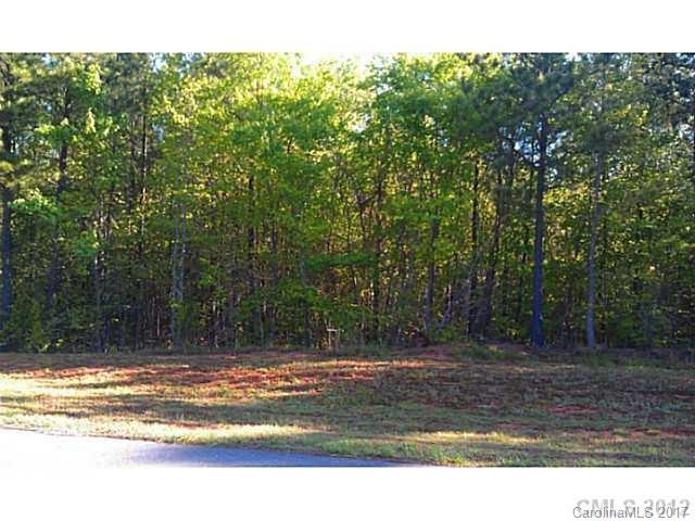 6728 Goose Point Drive #145, Denver, NC 28037 (#3294170) :: The Ramsey Group