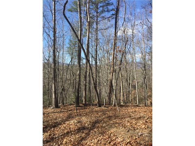 661 South Cove Road #27, Mill Spring, NC 28756 (#3294774) :: Burton Real Estate Group